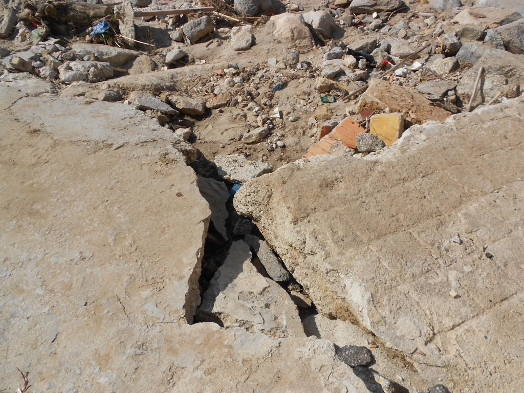 spiaggia formicoli marzo 2014 (13)