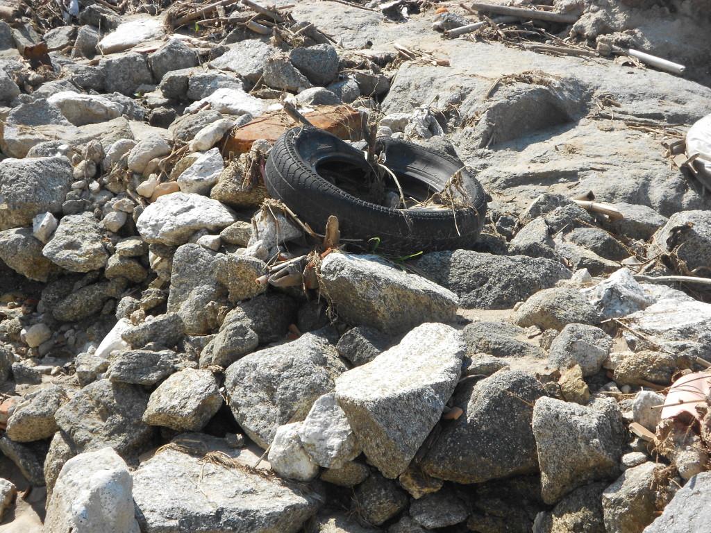 spiaggia formicoli marzo 2014 (7)