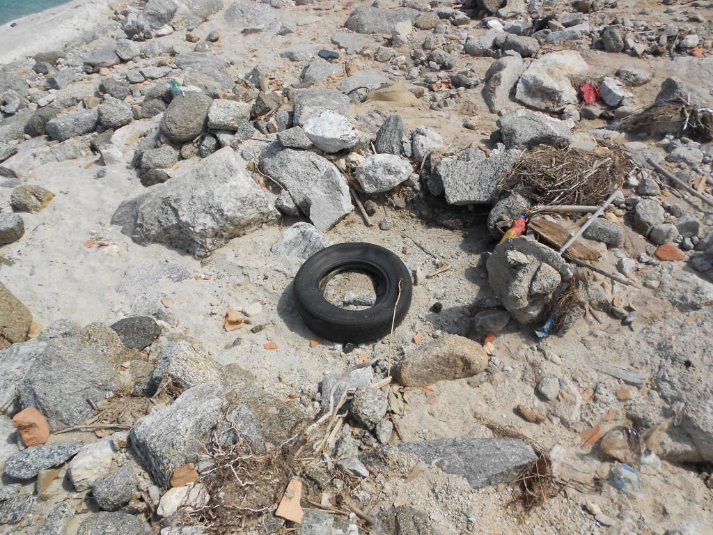 spiaggia formicoli maggio 14 (11)
