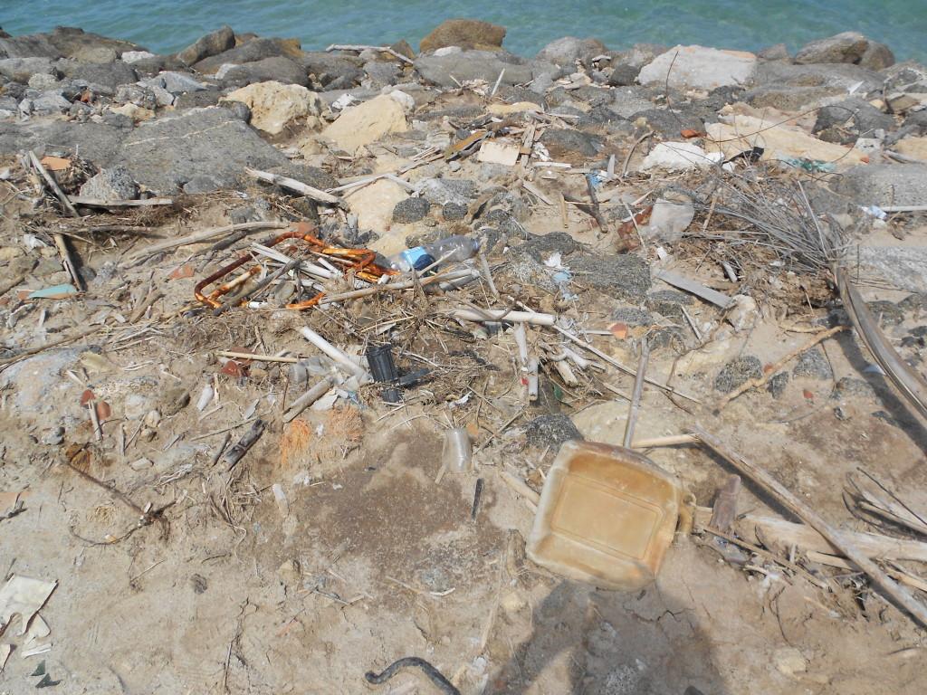 spiaggia formicoli maggio 14 (2)