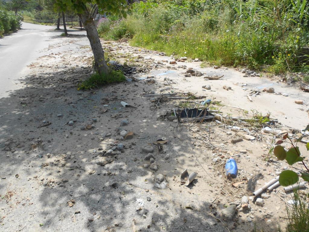 spiaggia formicoli maggio 14 (22)