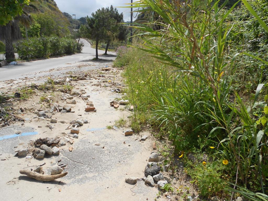spiaggia formicoli maggio 14 (23)