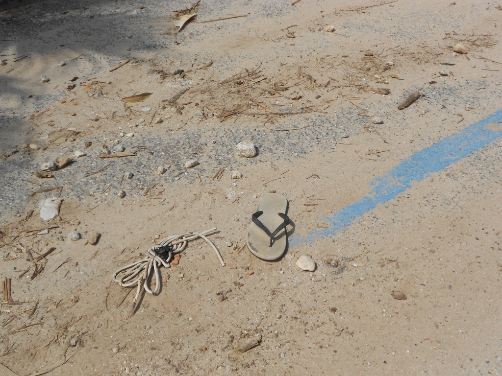 spiaggia formicoli maggio 14 (25)