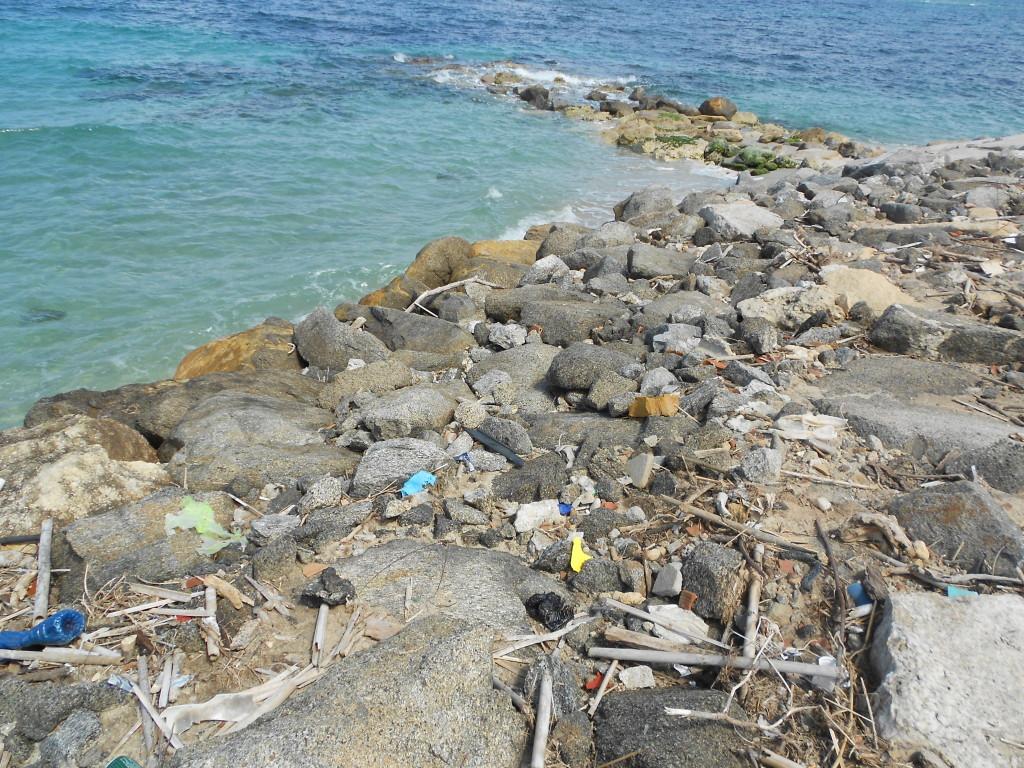 spiaggia formicoli maggio 14 (6)