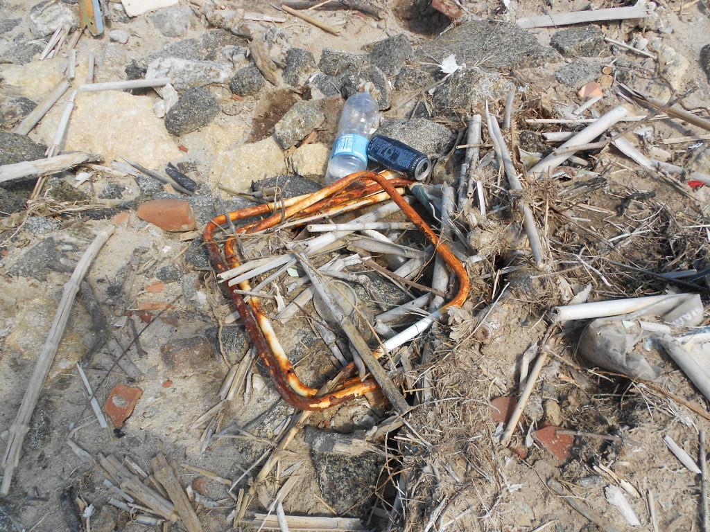 spiaggia formicoli maggio 14 (7)