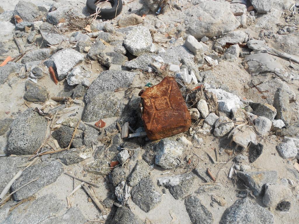 spiaggia formicoli maggio 14 (9)