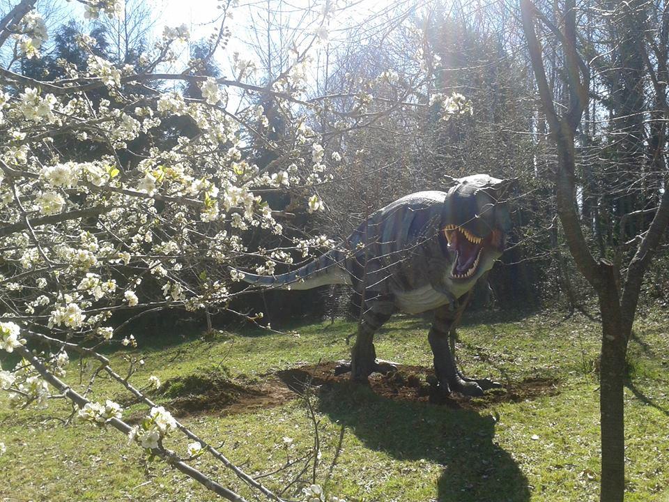 dinosauri simbario (1)