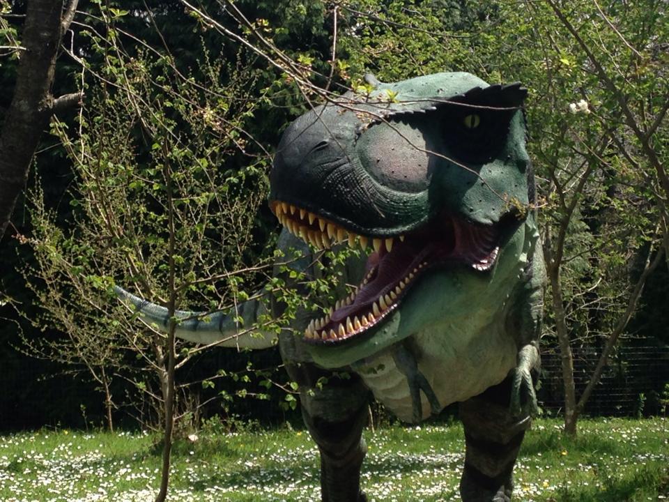 dinosauri simbario (2)