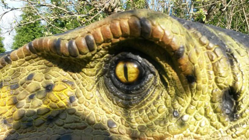 dinosauri simbario (4)