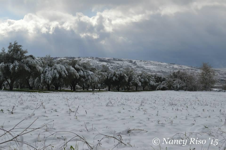 neve drapia e frazioni 090215 (12)