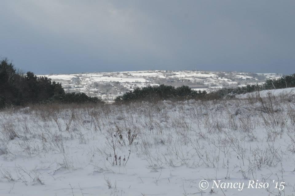 neve drapia e frazioni 090215 (13)