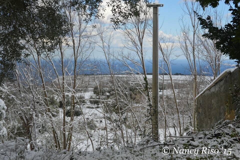 neve drapia e frazioni 090215 (19)