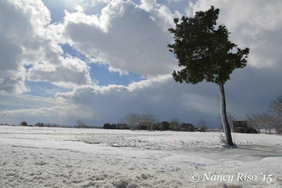 neve drapia e frazioni 090215 (21)