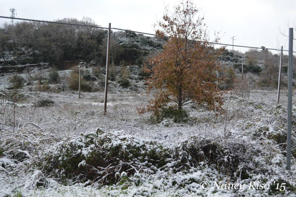 neve drapia e frazioni 090215 (30)