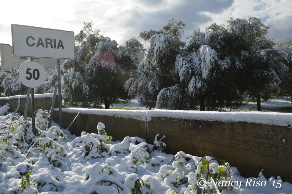 neve drapia e frazioni 090215 (32)