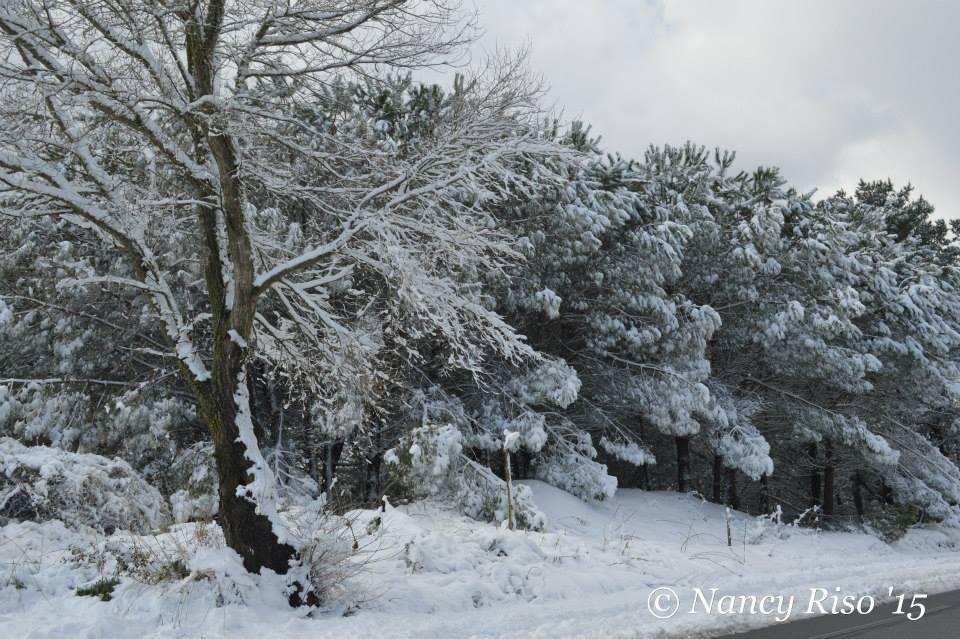 neve drapia e frazioni 090215 (5)