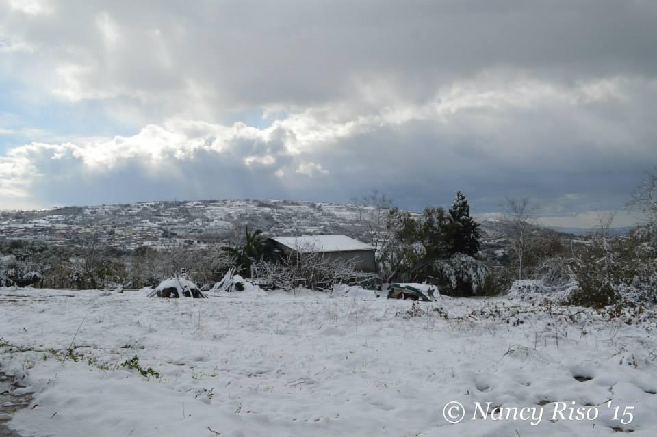 neve drapia e frazioni 090215 (54)