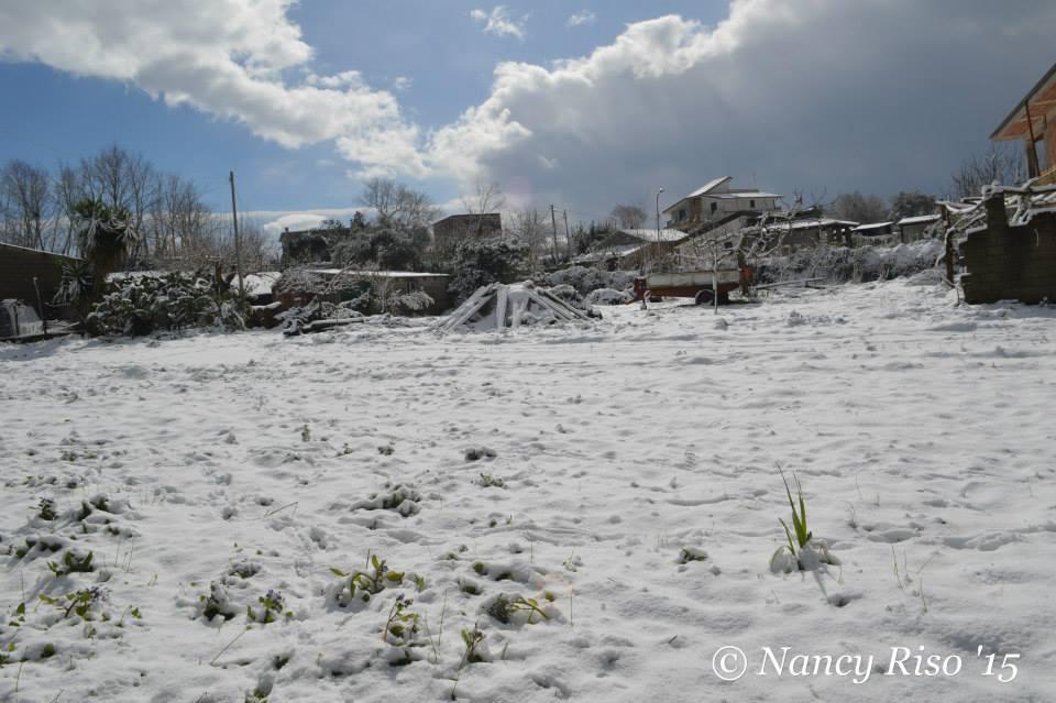 neve drapia e frazioni 090215 (62)