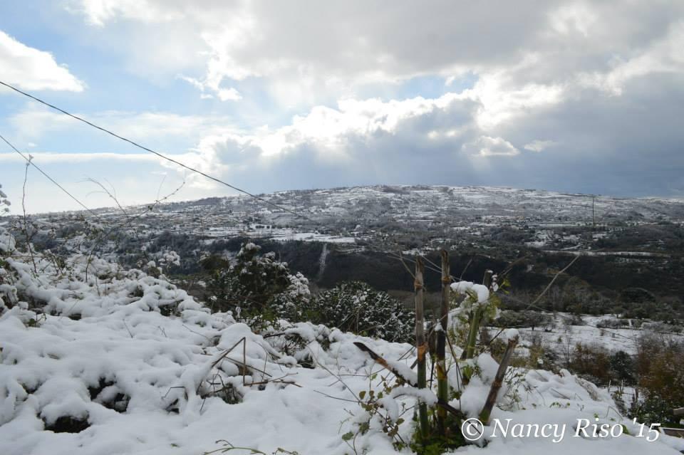 neve drapia e frazioni 090215 (71)