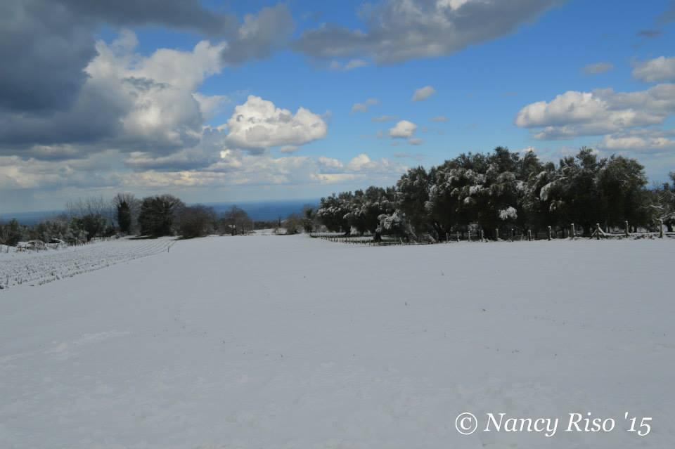 neve drapia e frazioni 090215 (73)