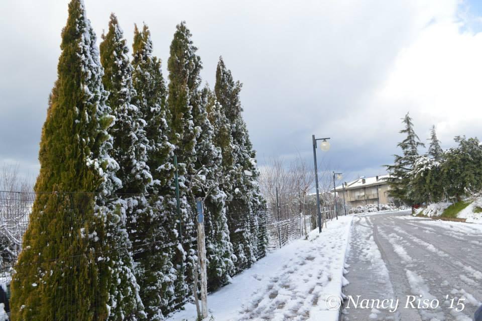 neve drapia e frazioni 090215 (76)
