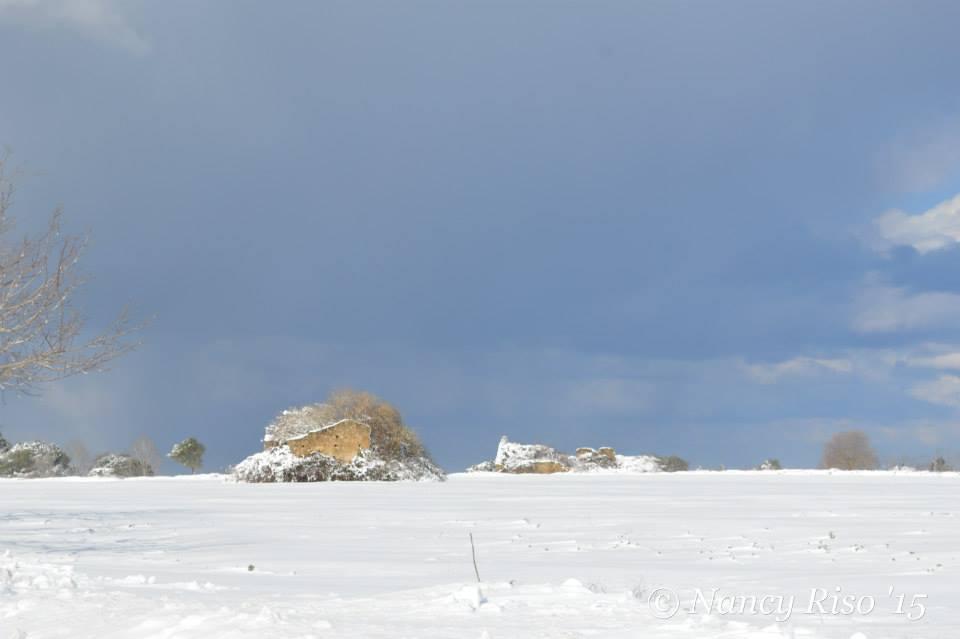 neve drapia e frazioni 090215 (8)