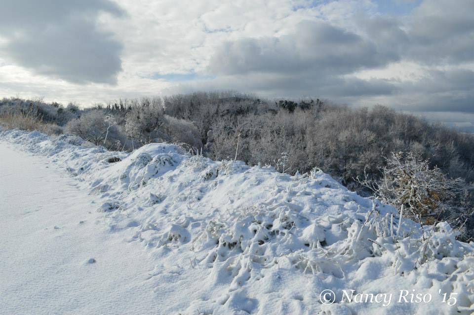 neve drapia e frazioni 090215 (84)
