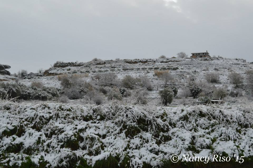 neve drapia e frazioni 090215 (88)