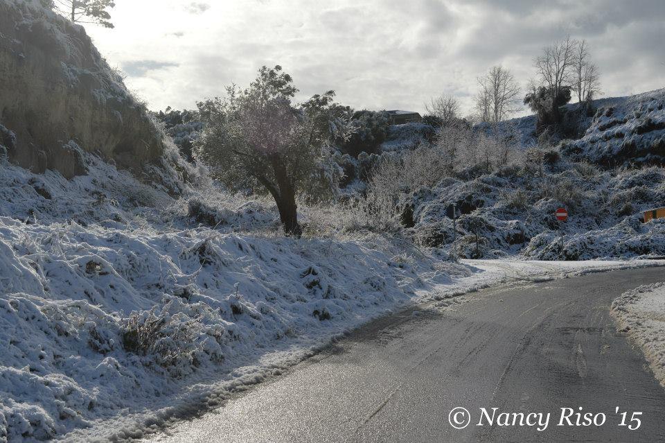 neve drapia e frazioni 090215 (9)
