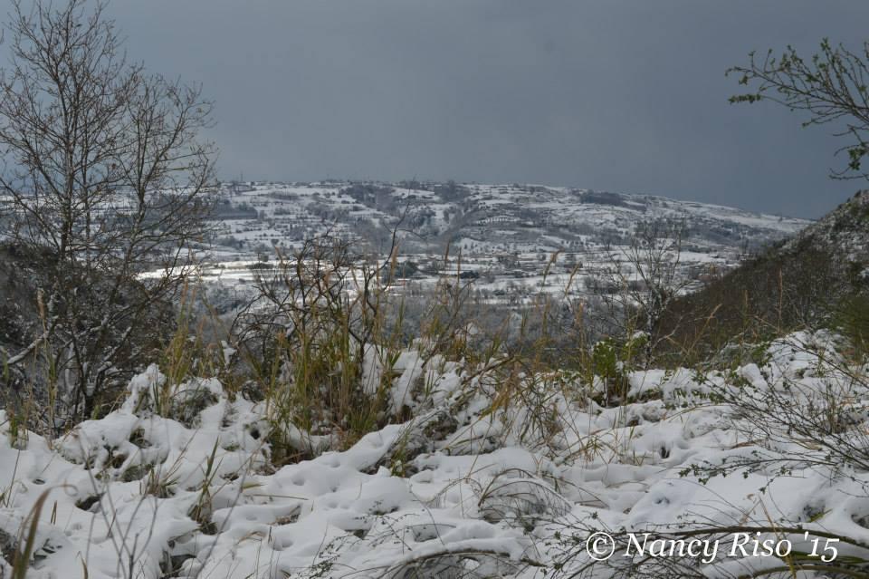 neve drapia e frazioni 090215 (91)