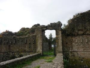 arena (55)