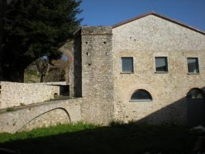 mongiana (13)
