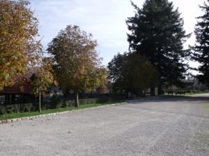 mongiana (4)