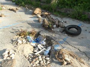 spiaggia formicoli (1)
