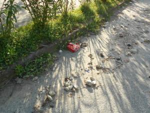 spiaggia formicoli (20)