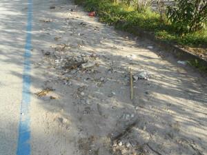 spiaggia formicoli (21)