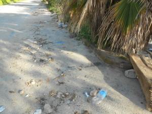 spiaggia formicoli (23)