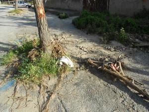 spiaggia formicoli (3)