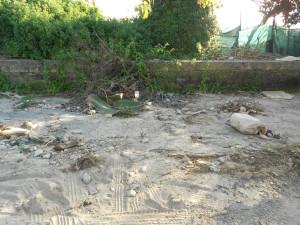 spiaggia formicoli (36)